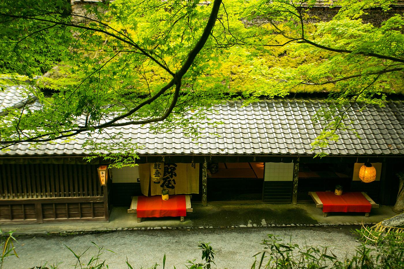 http://ayuchaya-hiranoya.com/wp-content/themes/theme2014/common/images/spring/top_bg_01.jpg